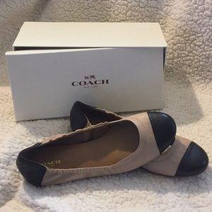 COACH Callie ballet flat.